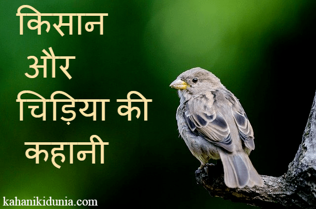 Motivational Story of A Sparrow and Farmer