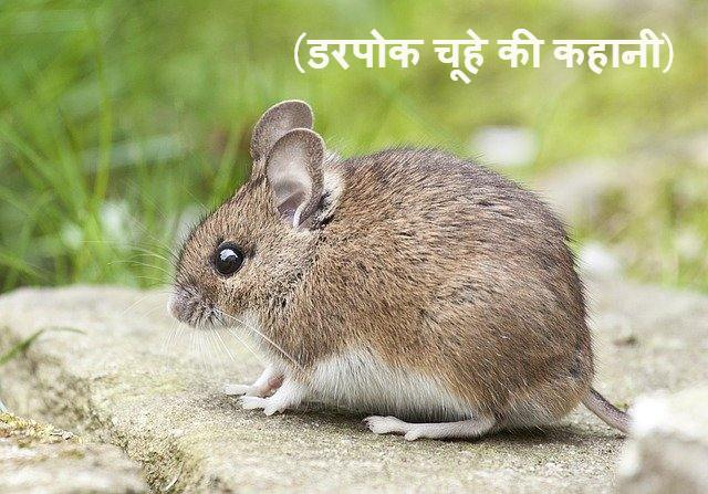 डरपोक चूहा | Sneaky Mouse | Best Motivational Story in Hindi